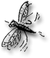 mosquito3-115x96.png